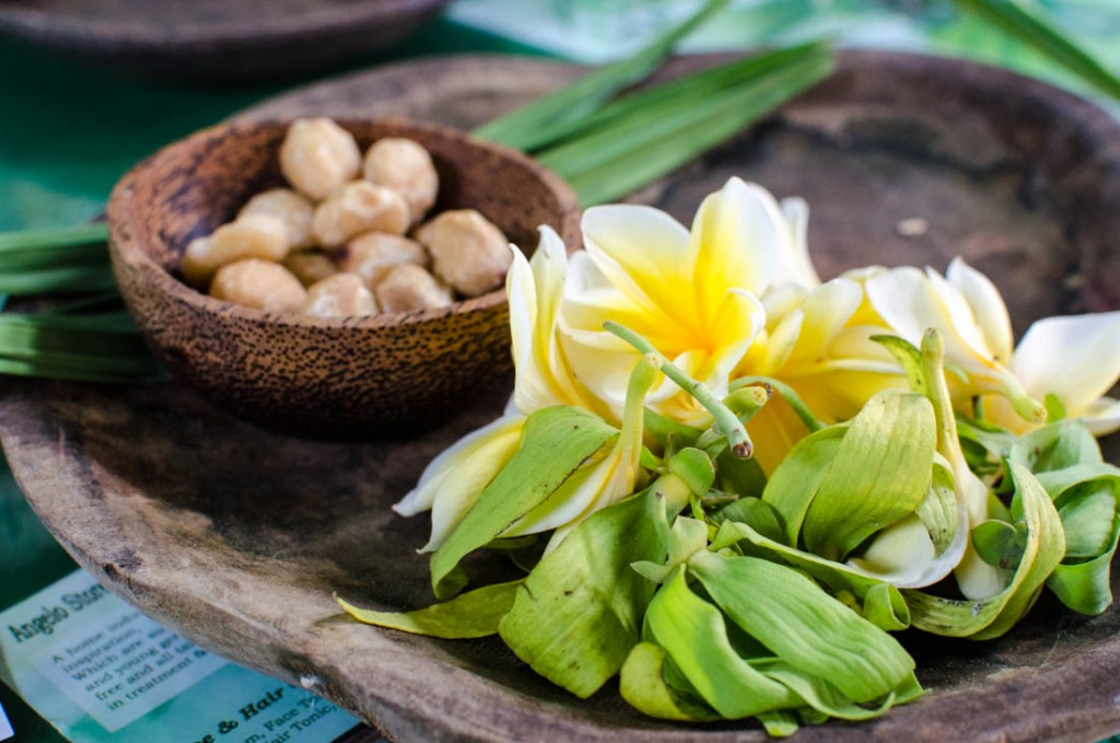 Exploring Natural Beauty and Ancient Medicine in Ubud